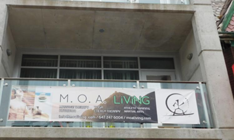 Picture of M.O.A. Living storefront
