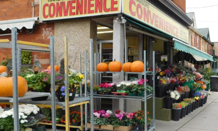 Picture of Harbord Convenience storefront
